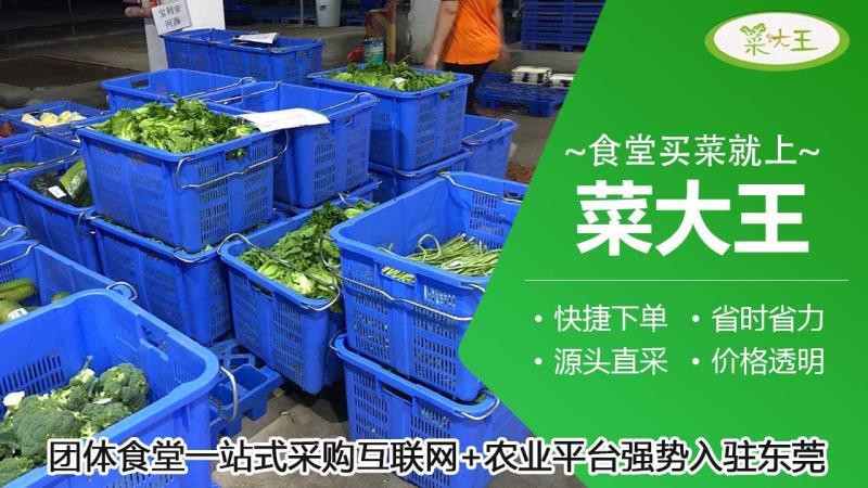 菜大王:餐饮规模4万亿,繁荣背后存在哪些行业乱象?
