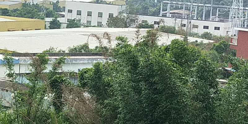 福建漳州角美镇林地里深藏槽罐车和油库