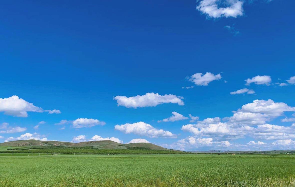 草地上有许多云  描述已自动生成