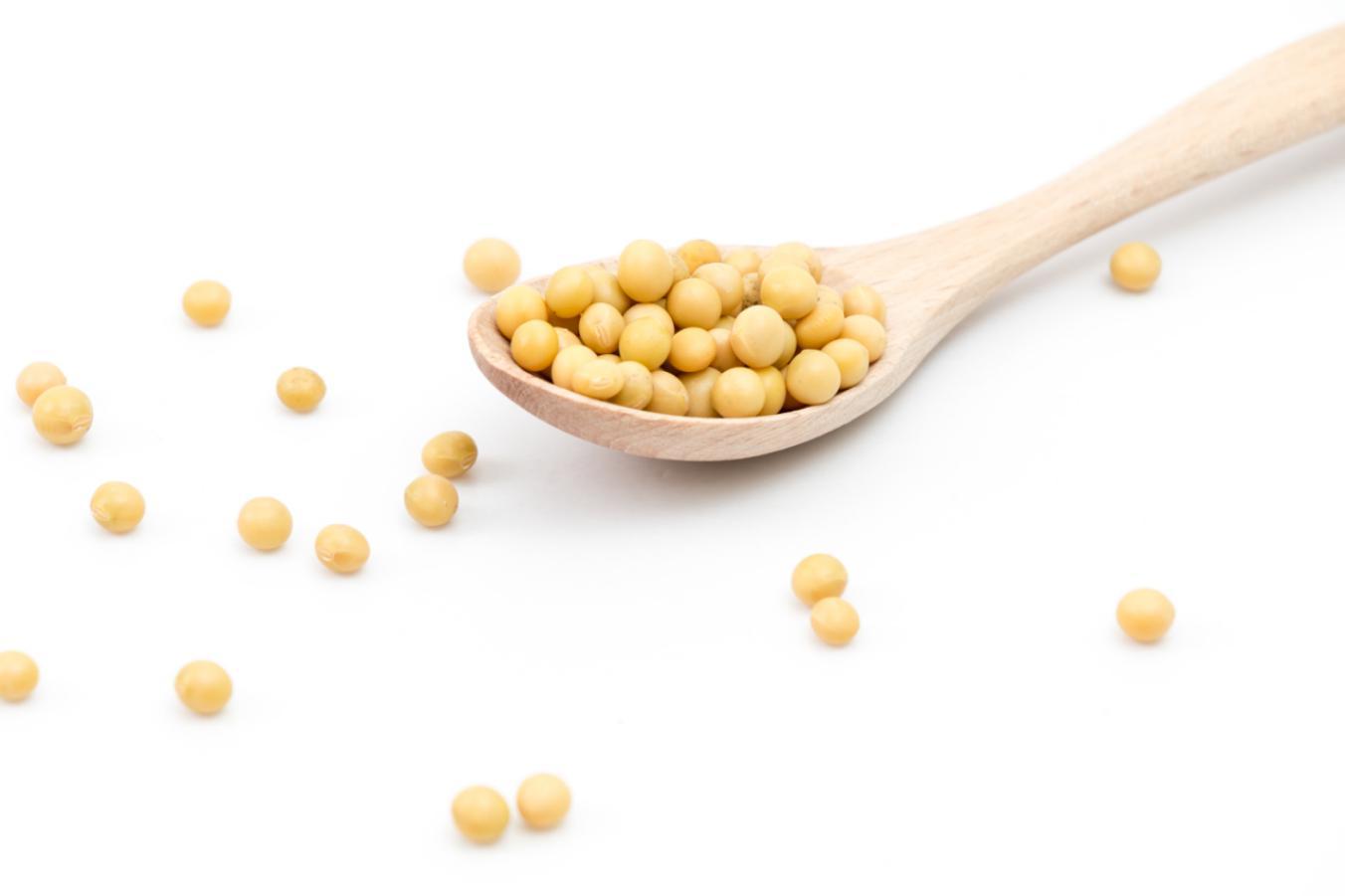 摄图网_500161698_散落的黄豆和木勺(非企业商用)