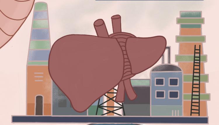 从柔软深红色到死亡泥土色,难道你还不查一下脂肪肝吗?