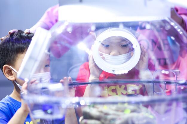 《侏罗纪世界电影特展》上海站盛大开幕