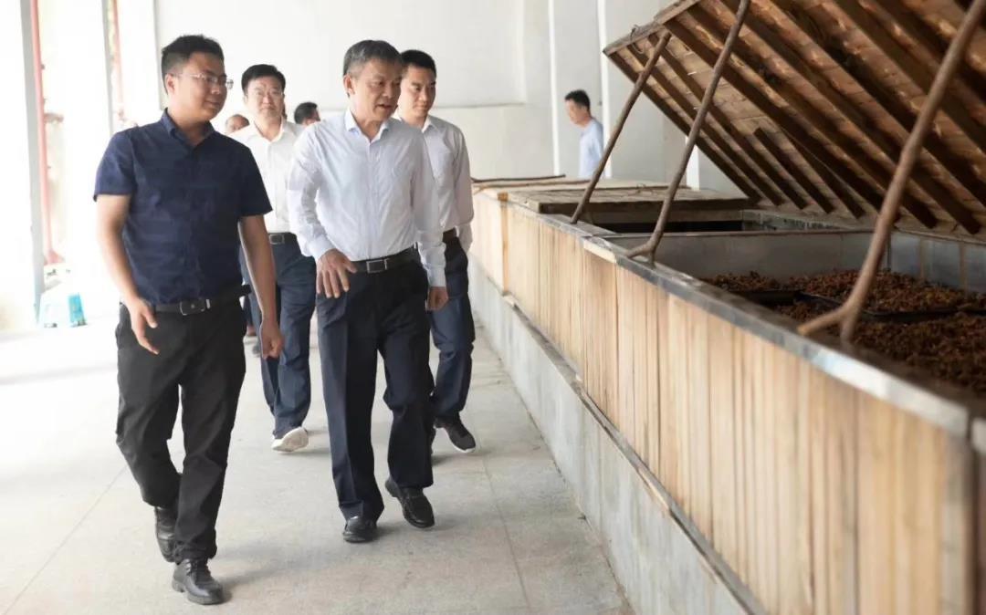 池州市市长操龙灿调研如是心黄精产业园