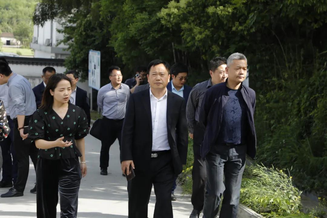 安徽省蚌埠市领导一行到访冰雪容黄精产业园调研考察